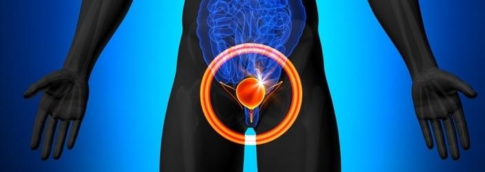 ultrasonido-cancer-de-vejiga.png