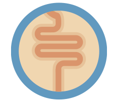 cancer-del-intestino-delgado